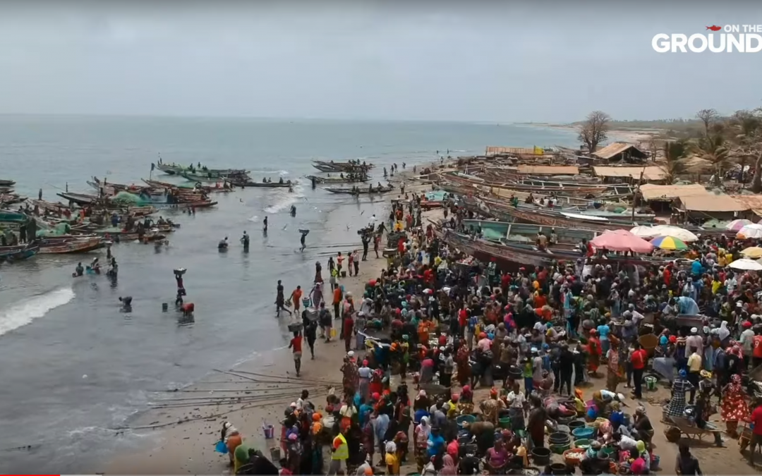 Gambia: Undocumented Lives